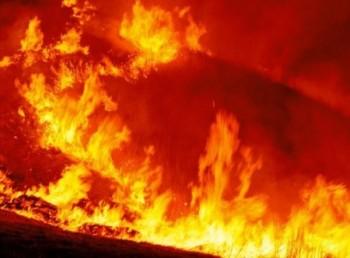 """福島の山火事で""""放射性物質拡散""""はデマ? 大手メディアの危うい報道姿勢"""