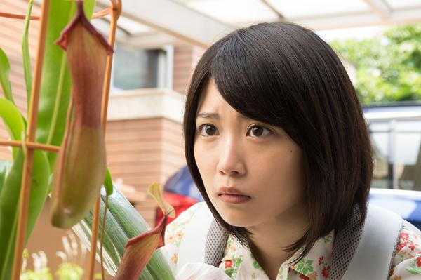 志田未来がオトナの土ドラ  東海...